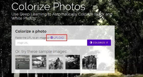 تحويل الصور الأبيض والأسود لصور ملونة