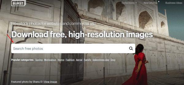 موقع تحميل الصور مجاناً بدون حقوق